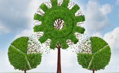 Abierto el plazo a los Premios Europeos de Medio Ambiente a la Empresa