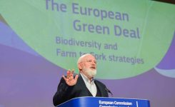 La UE quiere mejorar y proteger su biodiversidad para 2030